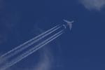 syunさんが、成田国際空港で撮影したアシアナ航空 A380-841の航空フォト(写真)