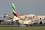 syunさんが、成田国際空港で撮影したエミレーツ航空 A380-861の航空フォト(写真)