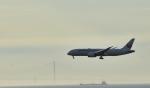 Take51さんが、関西国際空港で撮影した日本航空 787-8 Dreamlinerの航空フォト(写真)