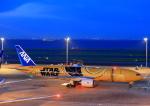 タミーさんが、羽田空港で撮影した全日空 777-281/ERの航空フォト(写真)