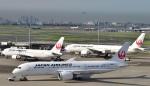 Take51さんが、羽田空港で撮影した日本航空 787-8 Dreamlinerの航空フォト(写真)