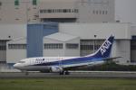 hiroki-JA8674さんが、伊丹空港で撮影したANAウイングス 737-54Kの航空フォト(飛行機 写真・画像)