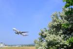 ちょっきんさんが、函館空港で撮影した日本航空 767-346/ERの航空フォト(写真)