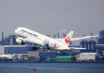 タミーさんが、羽田空港で撮影した日本航空 787-8 Dreamlinerの航空フォト(写真)