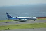 meijeanさんが、羽田空港で撮影した全日空 737-881の航空フォト(写真)
