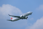 Fatman125さんが、伊丹空港で撮影した日本航空 737-846の航空フォト(飛行機 写真・画像)