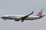 camelliaさんが、成田国際空港で撮影したチャイナエアライン 737-8Q8の航空フォト(写真)