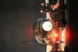 ceskykrumlovさんが、羽田空港で撮影したニュージーランド航空 787-9の航空フォト(写真)