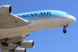DREAMWINGさんが、ロサンゼルス国際空港で撮影した大韓航空 A380-861の航空フォト(飛行機 写真・画像)
