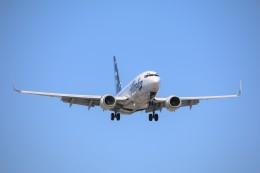 DREAMWINGさんが、ロサンゼルス国際空港で撮影したアラスカ航空 737-790の航空フォト(飛行機 写真・画像)