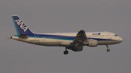 SVMさんが、羽田空港で撮影した全日空 A320-211の航空フォト(飛行機 写真・画像)