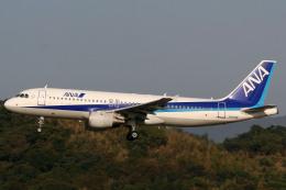 A-Chanさんが、福岡空港で撮影した全日空 A320-211の航空フォト(飛行機 写真・画像)