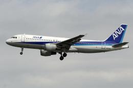 A-Chanさんが、羽田空港で撮影した全日空 A320-211の航空フォト(飛行機 写真・画像)