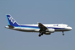 A-Chanさんが、成田国際空港で撮影した全日空 A320-214の航空フォト(飛行機 写真・画像)