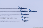 dragonflyさんが、千歳基地で撮影した航空自衛隊 T-4の航空フォト(飛行機 写真・画像)