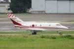 yabyanさんが、名古屋飛行場で撮影した航空自衛隊 U-125 (BAe-125-800FI)の航空フォト(飛行機 写真・画像)