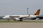 ハピネスさんが、関西国際空港で撮影したタイガーエア台湾 A320-232の航空フォト(飛行機 写真・画像)