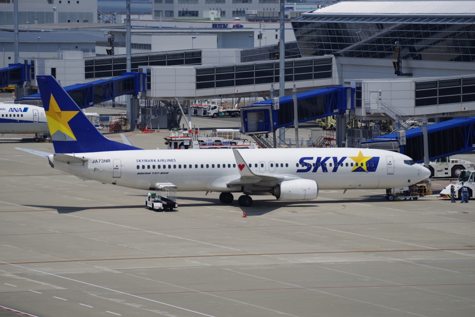 yabyanさんのスカイマーク Boeing 737-800 (JA73NR) 航空フォト