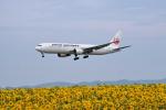 アイスコーヒーさんが、女満別空港で撮影した日本航空 767-346の航空フォト(飛行機 写真・画像)