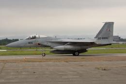 アイスコーヒーさんが、千歳基地で撮影した航空自衛隊 F-15J Eagleの航空フォト(飛行機 写真・画像)