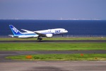 sommaさんが、羽田空港で撮影した全日空 787-8 Dreamlinerの航空フォト(写真)