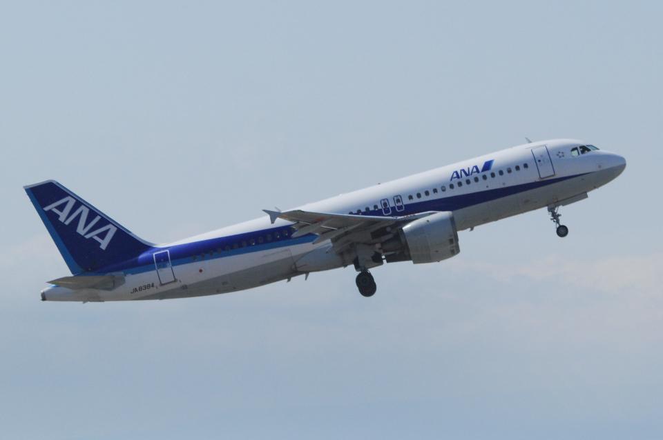 yabyanさんの全日空 Airbus A320 (JA8384) 航空フォト