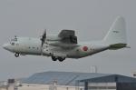 青路村さんが、伊丹空港で撮影した海上自衛隊 C-130Rの航空フォト(写真)