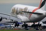 take_2014さんが、成田国際空港で撮影したエミレーツ航空 A380-861の航空フォト(写真)