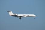 ceskykrumlovさんが、羽田空港で撮影したヒューレット・パッカード G-V Gulfstream Vの航空フォト(写真)
