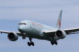 take_2014さんが、成田国際空港で撮影したエア・カナダの航空フォト(飛行機 写真・画像)
