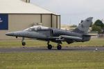 チャッピー・シミズさんが、フェアフォード空軍基地で撮影したチェコ空軍 L-159Aの航空フォト(写真)