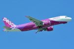 tsubasa0624さんが、那覇空港で撮影したピーチ A320-214の航空フォト(写真)