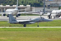tsubasa0624さんが、嘉手納飛行場で撮影した航空自衛隊 F-15J Eagleの航空フォト(写真)