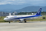 kumagorouさんが、徳島空港で撮影した全日空 A320-211の航空フォト(飛行機 写真・画像)