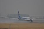 テッシーさんが、成田国際空港で撮影した全日空 787-9の航空フォト(飛行機 写真・画像)