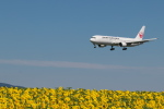 EXIA01さんが、女満別空港で撮影した日本航空 767-346/ERの航空フォト(写真)