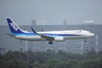 yabyanさんが、新千歳空港で撮影した全日空 737-881の航空フォト(飛行機 写真・画像)