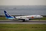 ハピネスさんが、神戸空港で撮影した全日空 737-881の航空フォト(飛行機 写真・画像)
