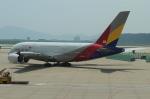 uhfxさんが、仁川国際空港で撮影したアシアナ航空 A380-841の航空フォト(飛行機 写真・画像)