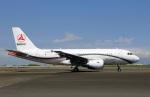 スポット110さんが、羽田空港で撮影したサニー・グループ A319-115CJの航空フォト(写真)