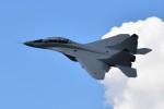 こじゆきさんが、ラメンスコエ空港で撮影したロシア軍 MiG-29の航空フォト(写真)