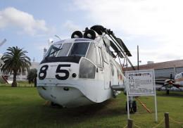 SHIKIさんが、館山航空基地で撮影した海上自衛隊 HSS-2B Sea Kingの航空フォト(飛行機 写真・画像)