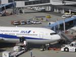 くまのんさんが、中部国際空港で撮影した全日空 767-381の航空フォト(写真)