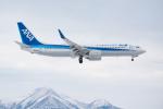 J-birdさんが、中標津空港で撮影した全日空 737-881の航空フォト(写真)