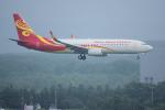 yabyanさんが、新千歳空港で撮影した海南航空 737-84Pの航空フォト(飛行機 写真・画像)