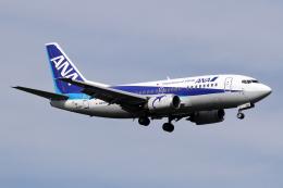 Echo-Kiloさんが、新千歳空港で撮影したANAウイングス 737-54Kの航空フォト(写真)