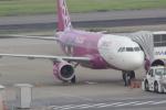 BIRDさんが、羽田空港で撮影したピーチ A320-214の航空フォト(飛行機 写真・画像)