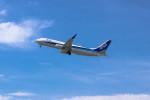 triton@blueさんが、高松空港で撮影した全日空 737-881の航空フォト(写真)
