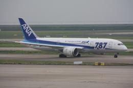 しゃこ隊さんが、上海浦東国際空港で撮影した全日空 787-8 Dreamlinerの航空フォト(飛行機 写真・画像)