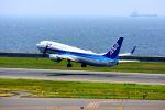 まいけるさんが、中部国際空港で撮影した全日空 737-881の航空フォト(写真)